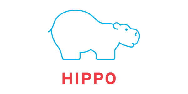 VASSIT-partners-with-Hippo-CMS-1.png